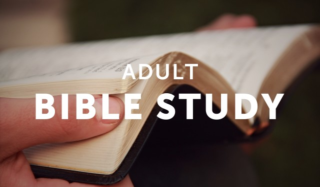 Happens. Bible study topics for adults amusing piece